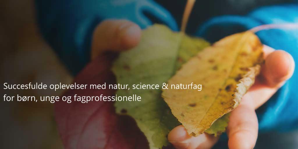 Succesfulde oplevelser med natur, science & naturfag for børn, unge og fagprofessionelle